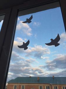 окно3