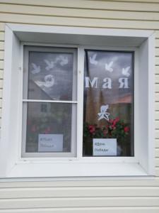 окно8
